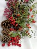 Νέα κάρτα έτους και Χριστουγέννων Στοκ εικόνα με δικαίωμα ελεύθερης χρήσης