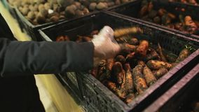 Νέα καυκάσια αγορά γυναικών φρέσκα άπλυτα καρότα από το οργανικό αγρόκτημα σε μια υπεραγορά Καταναλωτισμός, πώληση, οργανική και φιλμ μικρού μήκους