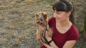 Νέα καυκάσια τοποθέτηση κοριτσιών με ένα χαριτωμένο τεριέ του Γιορκσάιρ σκυλιών υπαίθρια στο πάρκο φθινοπώρου απόθεμα βίντεο