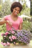 Νέα κηπουρική γυναικών Στοκ Εικόνα