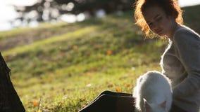 Νέα κυρία με τη γάτα του Μαίην Coon απόθεμα βίντεο