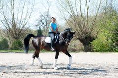 Νέα κυρία που οδηγά ένα άλογο στο ιππικό σχολείο Διαδικασία κατάρτισης στοκ φωτογραφία