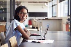 Νέα μαύρη γυναίκα στην αρχή με το lap-top που χαμογελά στη κάμερα στοκ εικόνα