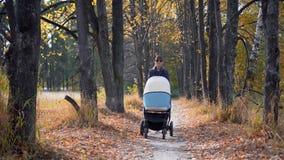 Νέα μητέρα με το καροτσάκι που περπατά στο πάρκο φθινοπώρου απόθεμα βίντεο