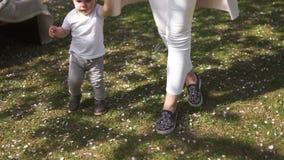 Νέα μητέρα που περπατά με το γιο παιδιών αγοράκι της σε ένα πάρκο κάτω από τα δέντρα sakura απόθεμα βίντεο