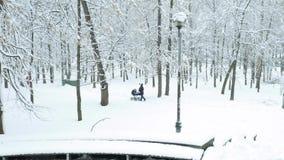 Νέα μητέρα που περπατά στο χιονώδες πάρκο φιλμ μικρού μήκους
