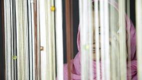 Νέα μουσουλμανική αραβική γυναίκα στο ρόδινο hijab που μιλά στο τηλέφωνο κυττάρων και που φαίνεται έξω το παράθυρο απόθεμα βίντεο
