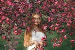Νέα ξανθή γυναίκα που στέκεται σε έναν ανθίζοντας κήπο ανθίζοντας κεράσι όμορφη γυναίκα πορτρέτου Κλείστε επάνω του προσώπου γυνα Στοκ εικόνες με δικαίωμα ελεύθερης χρήσης