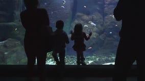 Νέα οικογένεια με τα μικρά παιδιά που προσέχουν στα ψάρια και τους καρχαρίες στο γιγαντιαίο oceanarium φιλμ μικρού μήκους