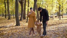 Νέα οικογένεια οι διακοπές που περπατούν στο δάσος φθινοπώρου απόθεμα βίντεο