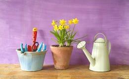 Νέα λουλούδια και εργαλεία κηπουρικής Στοκ Εικόνες