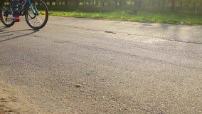 Νέα πάροδος πάρκων περπατήματος ζευγών, άνθρωποι που οδηγά τα ποδήλατα, που απολαμβάνουν τη θερινή αναψυχή φιλμ μικρού μήκους