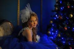 Νέα πριγκήπισσα σε ένα μπλε φόρεμα βραδιού Στοκ φωτογραφία με δικαίωμα ελεύθερης χρήσης