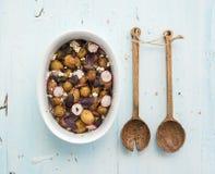 Νέα σαλάτα πατατών ψητού με το ραδίκι και μαλακός στοκ φωτογραφίες με δικαίωμα ελεύθερης χρήσης