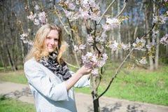 Νέα συμπαθητική γυναίκα μπροστά από τα δέντρα Sakura Στοκ Φωτογραφίες