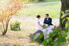 Νέα συνεδρίαση ζευγών σε έναν κορμό δέντρων στο πάρκο Στοκ Φωτογραφίες