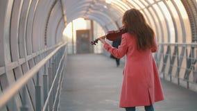 Νέα σύνθεση βιολιών γυναικών παίζοντας σόλο στην οδό απόθεμα βίντεο