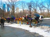 Νέα Υόρκη, ΗΠΑ - 13 Φεβρουαρίου 2013: Άλογο και μεταφορά στο Central Park, πόλη της Νέας Υόρκης, ΗΠΑ Στοκ εικόνα με δικαίωμα ελεύθερης χρήσης