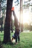 Νέα φίλαθλη γυναίκα που κάνει handstand τα κλίνοντας ευθέα πόδια στην άσκηση δέντρων στα ξύλα Στοκ Εικόνες