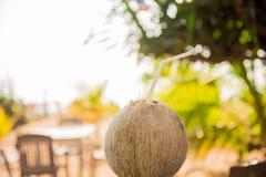 Νέα φρούτα καρύδων που κόβονται ανοικτά στο ποτό Στοκ φωτογραφία με δικαίωμα ελεύθερης χρήσης
