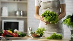 Νέα φύλλα σαλάτας εκμετάλλευσης γυναικών διαθέσιμα, οργανικά συστατικά μεσημεριανού γεύματος, χόμπι Στοκ φωτογραφία με δικαίωμα ελεύθερης χρήσης