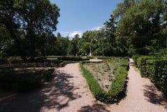 Νέα φύτευση των τριαντάφυλλων μεταξύ των καλλιεργημένων θάμνων πυξαριού σε έναν βοτανικό κήπο στοκ εικόνες