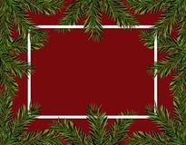 Νέα Χριστούγεννα έτους Πράσινοι κομψοί κλάδοι σε έναν κύκλο σε ένα κόκκινο υπόβαθρο Πλαίσιο για τη διαφήμιση και τις αγγελίες απο διανυσματική απεικόνιση