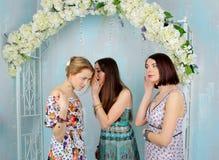 Νέα, όμορφα και κορίτσια συγκίνησης στα φωτεινά χρωματισμένα φορέματα Τα κορίτσια κουτσομπολεύουν Στοκ Εικόνες