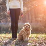 Νέα όμορφη γυναίκα και το σκυλί της (αμερικανικό κόκερ Στοκ Εικόνες