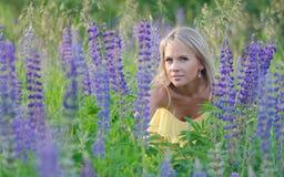 Νέα όμορφη γυναίκα στον τομέα lupine Στοκ φωτογραφίες με δικαίωμα ελεύθερης χρήσης