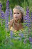Νέα όμορφη γυναίκα στον τομέα lupine Στοκ Εικόνα
