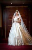 Νέα όμορφη πολυτελής γυναίκα στην τοποθέτηση γαμήλιων φορεμάτων στο πολυτελές εσωτερικό Πανέμορφη κομψή νύφη με το μακρύ πέπλο Πλ Στοκ Εικόνες