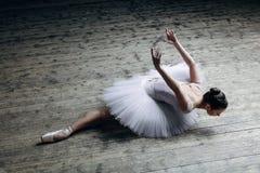Νέα όμορφη τοποθέτηση ballerina στο στούντιο στοκ φωτογραφία