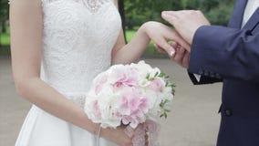 Νέα newlyweds που περπατούν έξω Η νύφη και ο νεόνυμφος περπατούν μαζί στο πάρκο στα χέρια χειμώνα ή καλοκαιριού και εκμετάλλευσης απόθεμα βίντεο