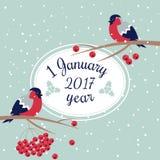 Νέες έτος και Χαρούμενα Χριστούγεννα Bullfinch Στοκ Φωτογραφίες