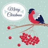 Νέες έτος και Χαρούμενα Χριστούγεννα Bullfinch Στοκ εικόνα με δικαίωμα ελεύθερης χρήσης