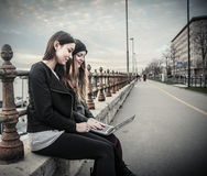 Νέες γυναίκες που εξετάζουν ένα lap-top στοκ φωτογραφία