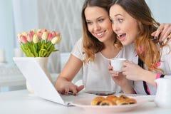 Νέες γυναίκες που εξετάζουν το lap-top Στοκ φωτογραφία με δικαίωμα ελεύθερης χρήσης
