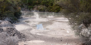 νέες λίμνες Ζηλανδία λάσπη& Στοκ Εικόνες