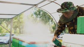 Νέες μέλισσες καπνίσματος ατόμων μελισσοκόμων μακρυά από την κυψέλη στο μελισσουργείο Στοκ φωτογραφία με δικαίωμα ελεύθερης χρήσης