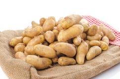 Νέες πατάτες rattes burlap Στοκ Φωτογραφίες