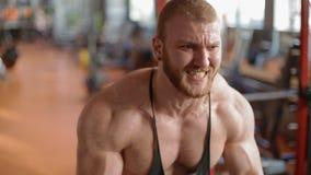 Νέοι άσπροι δικέφαλοι μυ'ες κατάρτισης bodybuilder στη γυμναστική απόθεμα βίντεο