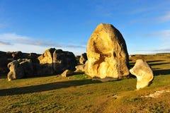 νέοι βράχοι Ζηλανδία ελε&phi Στοκ φωτογραφία με δικαίωμα ελεύθερης χρήσης