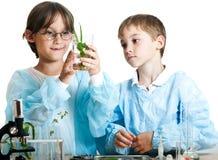 Νέοι επιστήμονες στοκ εικόνα με δικαίωμα ελεύθερης χρήσης