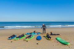 Νέοι που προετοιμάζονται να κάνει σερφ με ένα σχολείο κυματωγών στην παραλία στοκ φωτογραφία με δικαίωμα ελεύθερης χρήσης