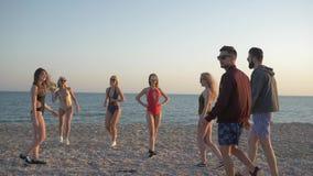 Νέοι στα κοστούμια λουσίματος που παίζουν την πετοσφαίριση παραλιών στη φύση στο Σαββατοκύριακο φιλμ μικρού μήκους