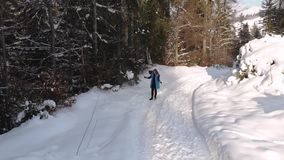 Νέοι όμορφοι περίπατοι κοριτσιών στο χιονώδες χειμερινό δάσος είναι ευτυχής και εύθυμη Το κορίτσι ρίχνει το χιόνι πέρα από το κεφ απόθεμα βίντεο