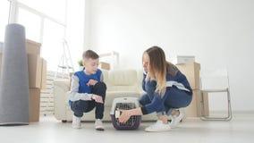 Νέοι Mom και ο γιος με τη γάτα τους κινούνται προς ένα νέο διαμέρισμα φιλμ μικρού μήκους