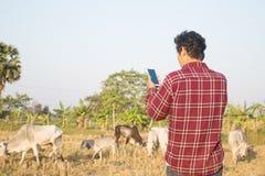Νέος έξυπνος αγρότης που χρησιμοποιεί το smartphone σε έναν τομέα στοκ φωτογραφία με δικαίωμα ελεύθερης χρήσης
