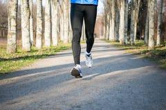 Νέος αθλητής που τρέχει στο πάρκο το κρύο ηλιόλουστο πρωί φθινοπώρου Υγιής έννοια τρόπου ζωής και αθλητισμού Στοκ Φωτογραφία
